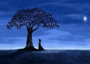 Yoga et bains de forêts